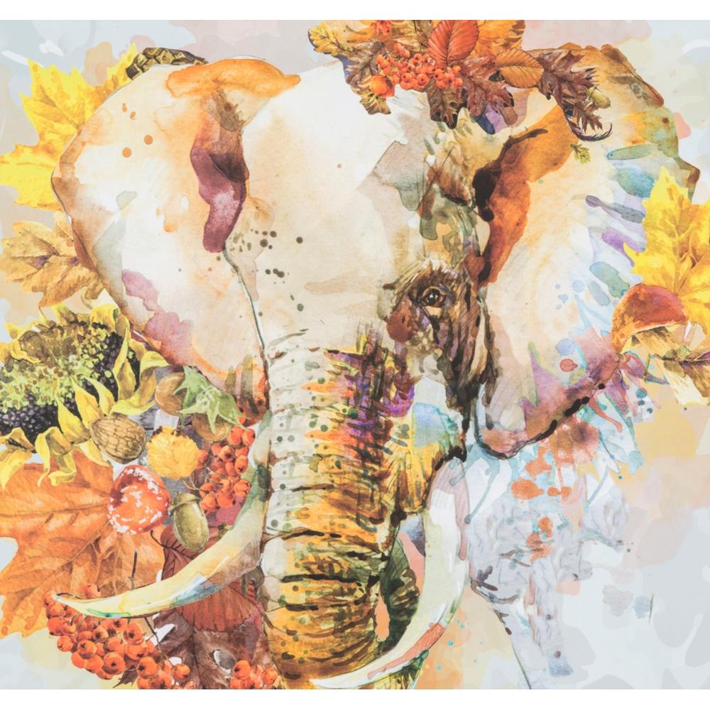 ELEPHANT PANO