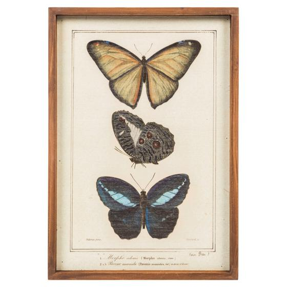 BUTTERFLY WOODEN PANO 50X35 CM
