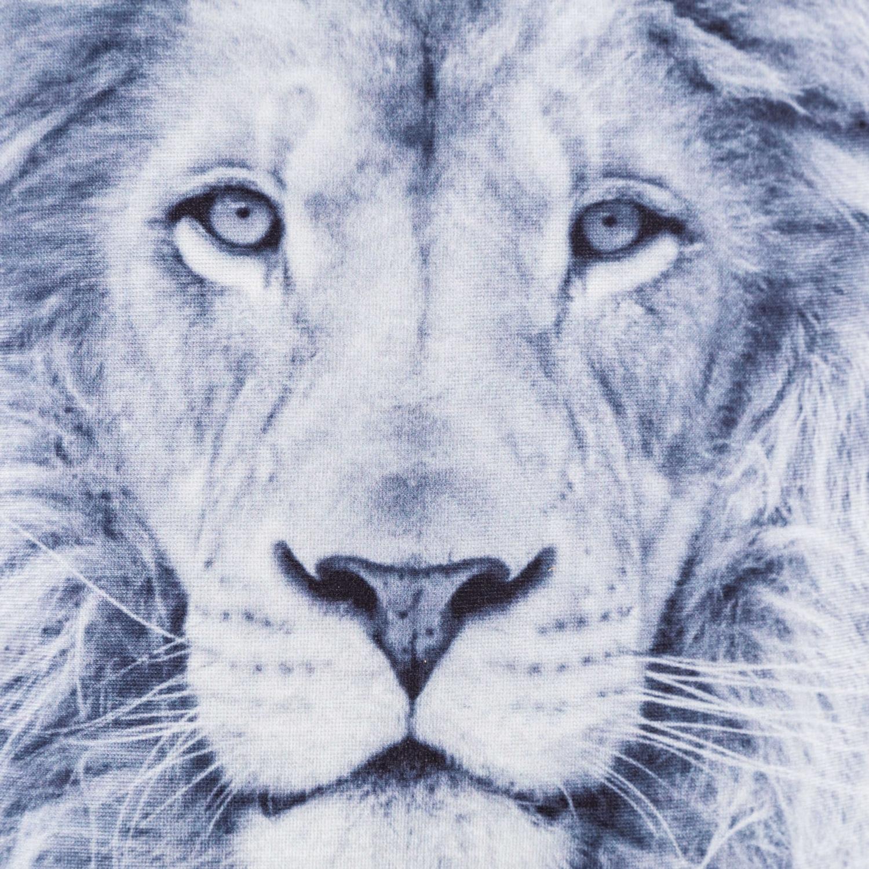 LION KIRLENT 45x45