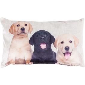 PUPPIES KIRLENT 35x55